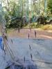 Koekalastus Vähä-Tiilijärvellä