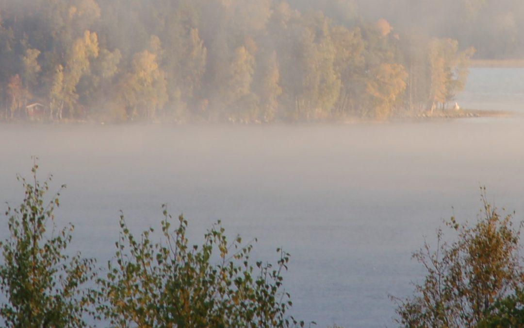 Lake Vesijärvi Foundation
