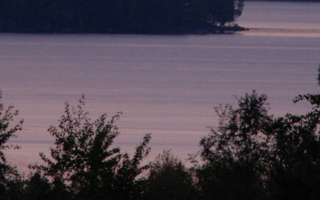 The strategy of Lake Vesijärvi Foundation
