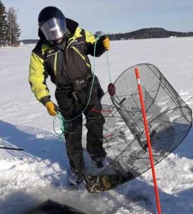 Vesijärven talvinen hoitokalastus alkoi