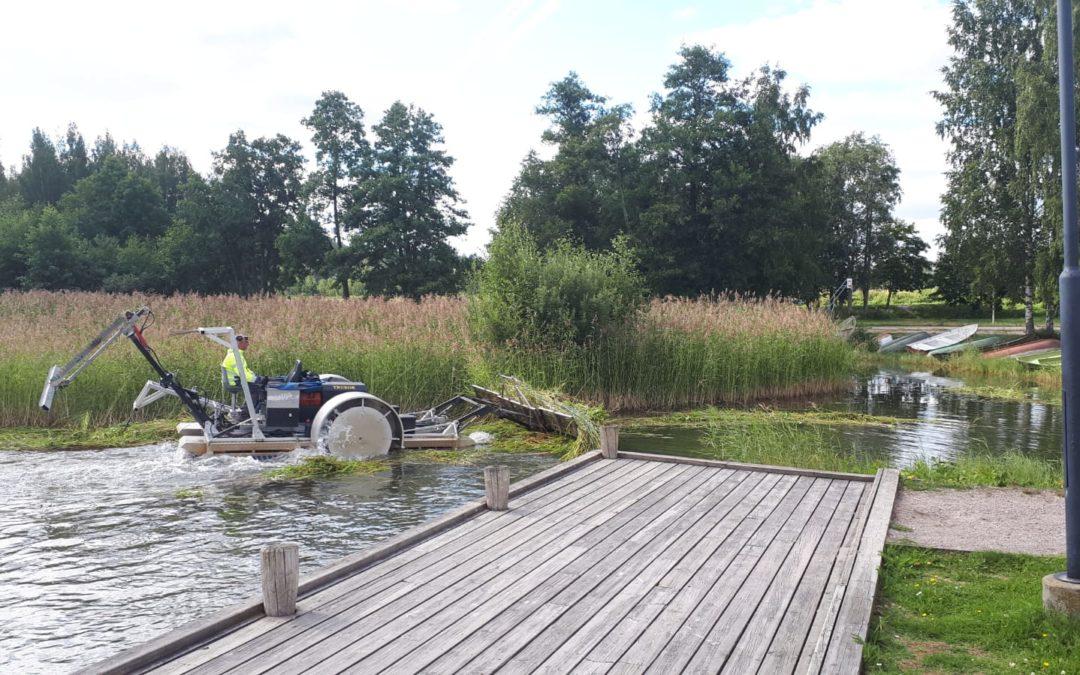 Vesijärven kesäniittoja tehtiin reilut 30 ha