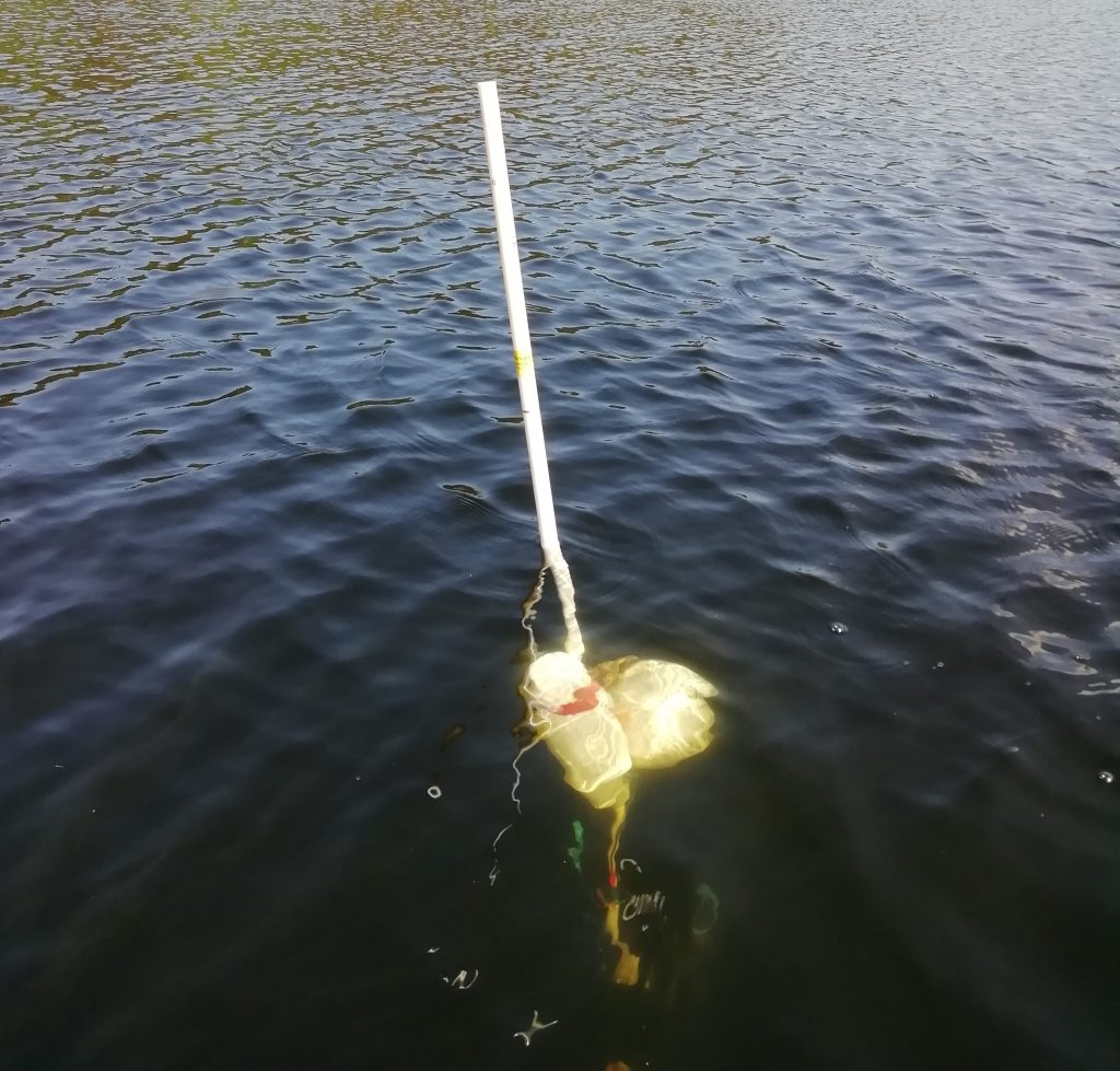 Vesijärvi