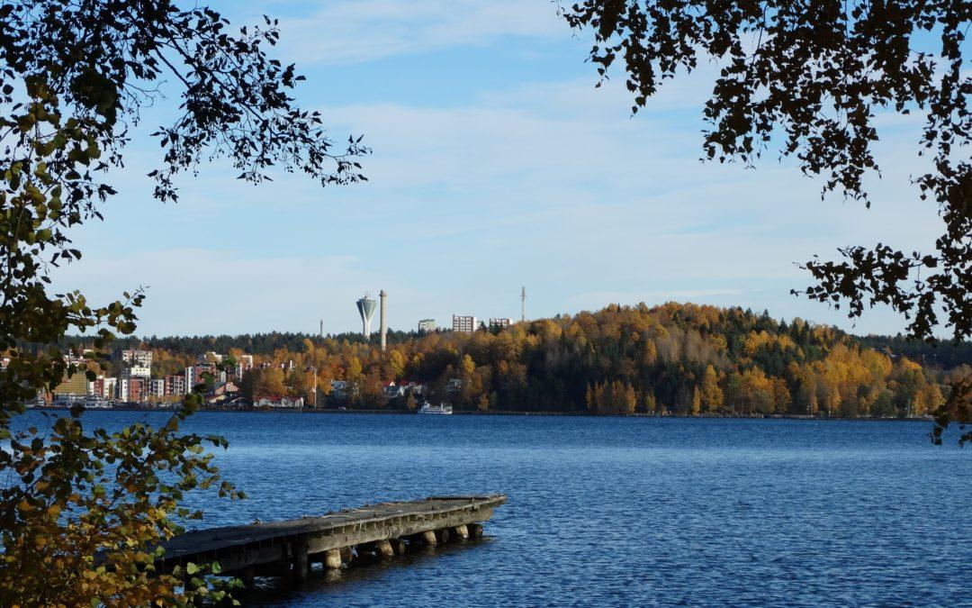 Vesijärven kesän ravinnepitoisuudet ovat laskusuunnassa